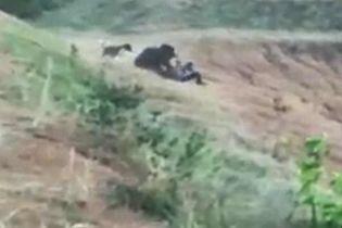 В Индии раненый медведь убил мужчину, который хотел сделать с ним селфи