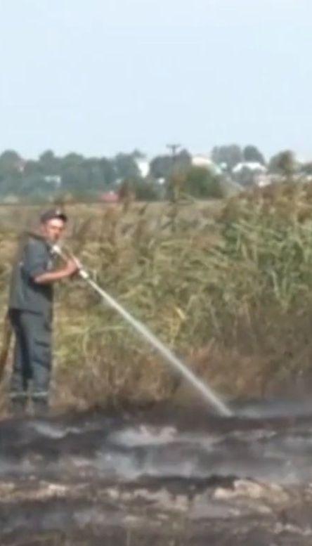 Недалеко от Львова двое суток горит 10 гектаров торфа
