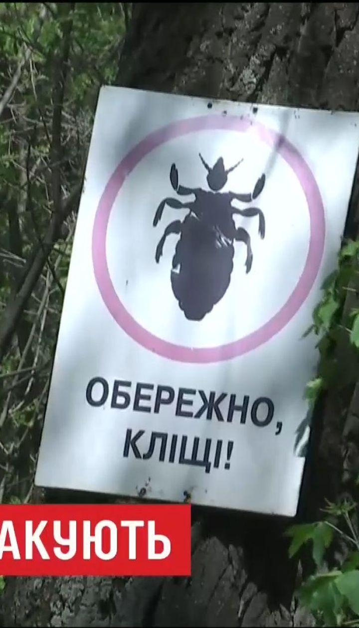 Опасный укус: в столичных парках нашли клещей, инфицированных болезнью Лайма