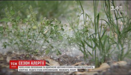 Эксперты рассказали, как уберечься от аллергии