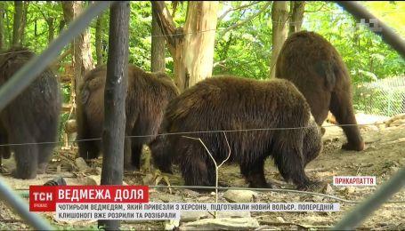 Для херсонських ведмедів будують новий вольєр у Галицькому природному парку