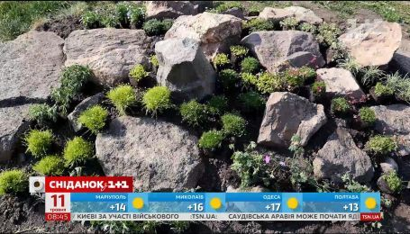 Як створити кам'янистий сад