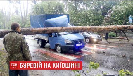 На Киевщине столетняя сосна пробила кабину грузовика