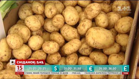 За последнюю неделю в Украине значительно подешевел молодой картофель