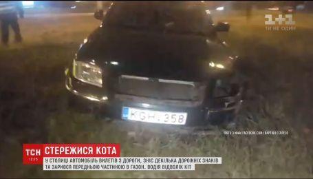 Водитель из своего кота попал в ДТП