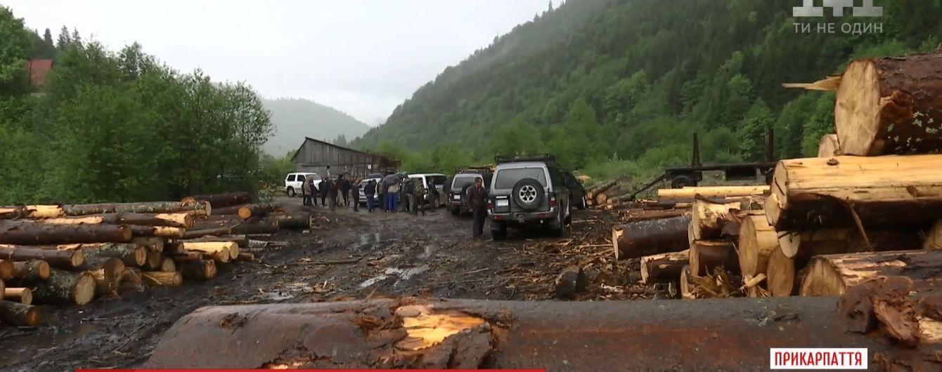 Скандал с вырубкой леса на Закарпатье СБУ говорит про незаконные схемы, а предприниматели – о рейдерском захвате