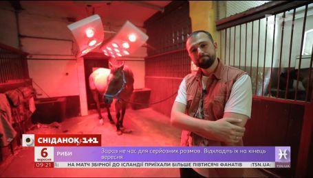 Мой путеводитель. Опольское воеводство - мошненские конюшни и сплавы на каяках