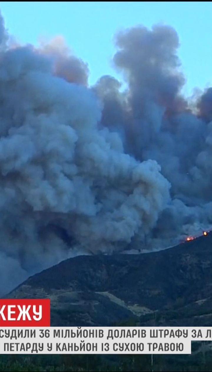 У США 15-річного підлітка зобов'язали сплатити 36 мільйонів доларів штрафу за лісову пожежу