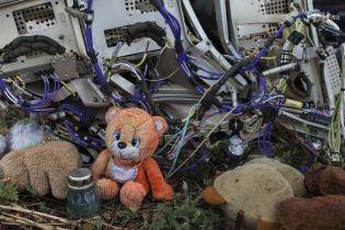 298 місць. Родичі загиблих в авіакатастрофі MH17 влаштували акцію під посольством Росії в Гаазі