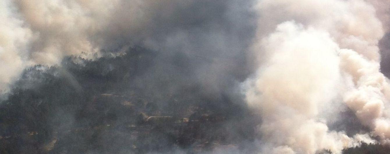 На Луганщине загорелся заминированный лес, пострадал тракторист