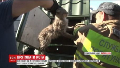 На Львовщине спасатели вытащили из 20-метрового колодца испуганного кота