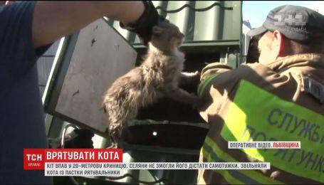 На Львівщині рятувальники витягли із 20-метрової криниці переляканого кота