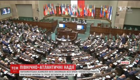 Парламентская ассамблея НАТО поддержала украинские амбиции по вступлению в Альянс
