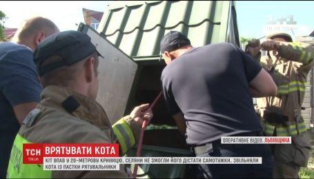 В Рудном кот упал в 20-метровый колодец