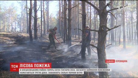 Понад три сотні рятувальників долучилися до гасіння масштабної пожежі на Херсонщині