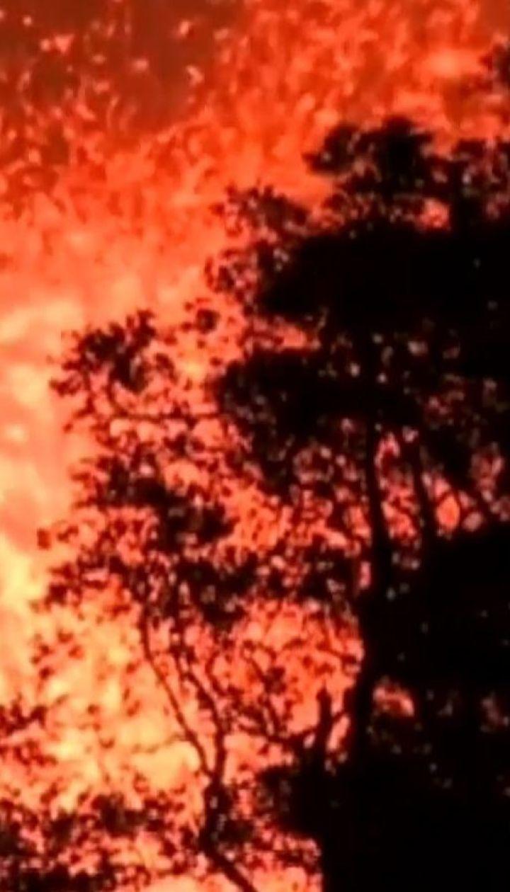 Лава из вулкана Килауэа уже охватила площадь 14 квадратных километров