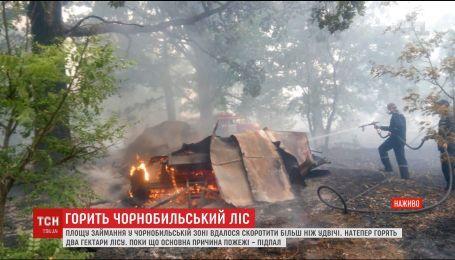 Пожежа біля Чорнобиля: причиною займання лісу міг бути підпал