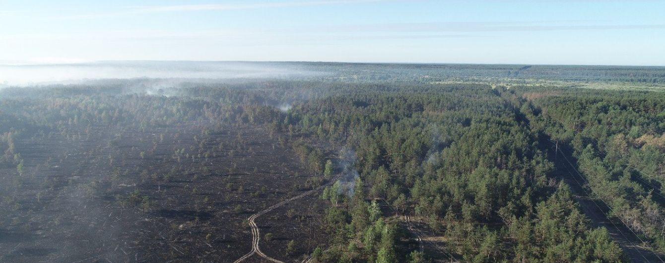 Радиационный фон в норме. Пожарные продолжают тушение пожара в Чернобыльской зоне