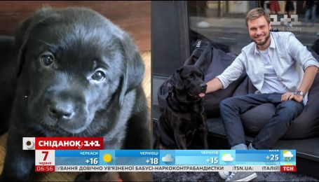 Егор Гордеев подарил своего щенка новой семье