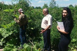 На Прикарпатье неплательщика алиментов заставили косить ядовитое растение