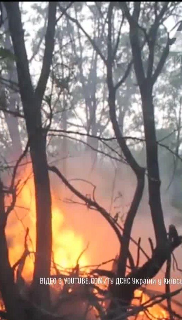 У Чорнобилі рятувальники повністю загасили пожежу