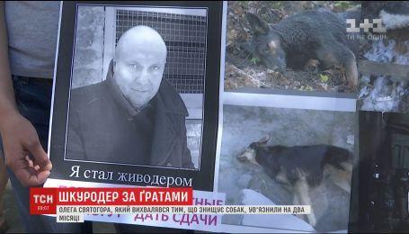 Известному живодеру Украины избрали меру пресечения