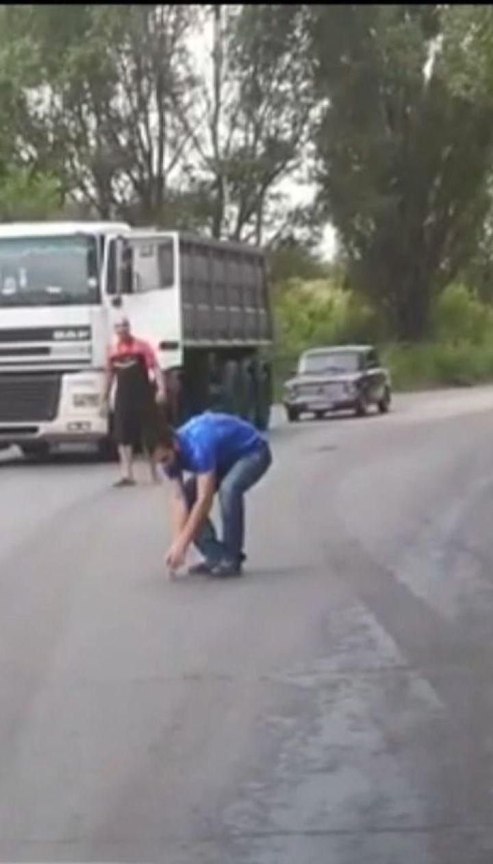 На Днепропетровщине грузовики остановились на дороге, чтобы спасти птенца