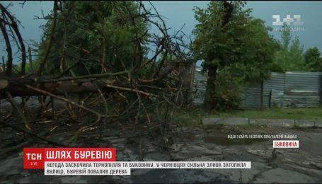 Ураганы, бешеные ливни и град - непогода застала Западные области