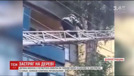 В Кривом Роге ребенок запутался в ветвях на высоте четвертого этажа