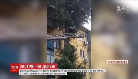 В Кривом Роге 10-летний мальчик запутался в ветвях тополя