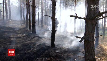 На Херсонщині горить понад 8 гектарів лісу