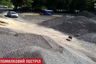 """На Рівненщині депутат машиною чавив """"вовка"""", який виявився породистим собакою"""