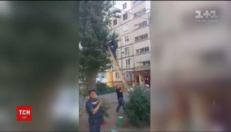 В Николаеве спасателям пришлось снимать ребенка с тополя