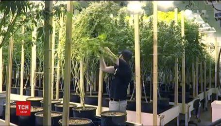 У Канаді легалізували марихуану