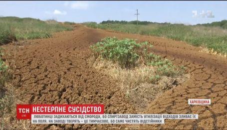 У Люботині на Харківщині люди задихаються від смороду через відходи місцевого спиртзаводу
