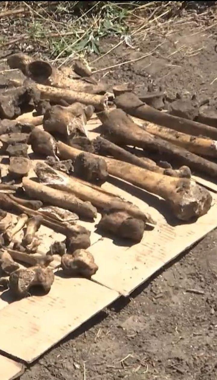 Неподалік Кропивницького знайшли арсенал боєприпасів часів Другої світової і братську могилу