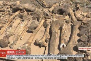 Вблизи Кропивницкого случайно наткнулись на братскую могилу, заполненную боеприпасами
