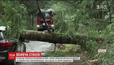 Мощный шторм в Польше: дерево убило заместителя мэра города Воломин