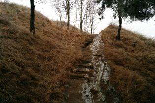 У Києві на Лисій горі виявили понад півсотні мін