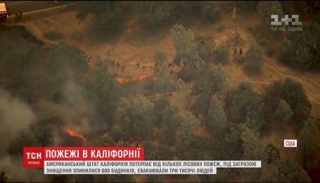 В Калифорнии из-за сильных лесных пожаров эвакуируют людей
