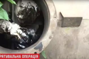 Во Львове спасатели вытащили из бочки с мазутом маленького котенка