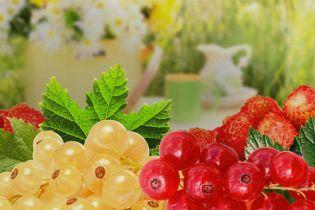 Самые полезные ягоды сезона
