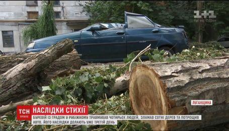 Ураган в Рубежном повалил сотни деревьев и сорвал крыши с домов