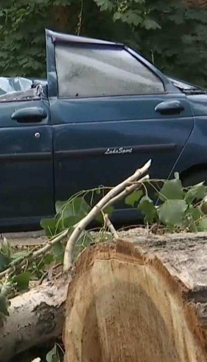 Буревій у Рубіжному повалив сотні дерев та позривав дахи з будинків