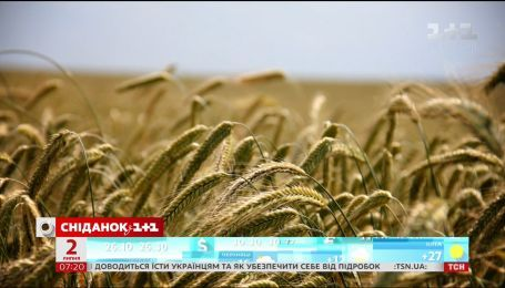 В Украине выросли цены на крупы - экономические новости