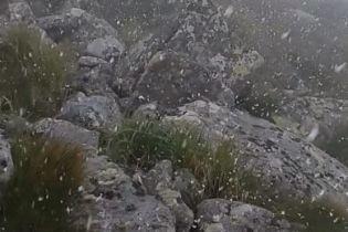 Июль в Карпатах начался со снегопада