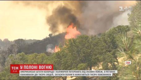 Два штати США потерпають від лісових пожеж
