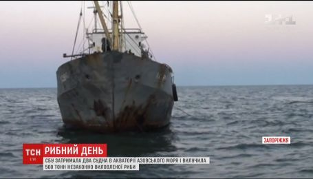СБУ изъяла 500 тонн незаконно выловленной рыбы вблизи Бердянска