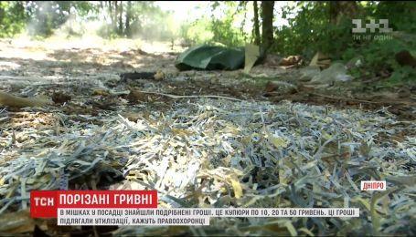 Порезанные гривны в мешках нашли в полях недалеко от Днепра