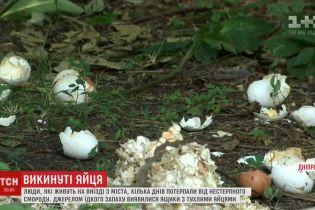 Мешканці Дніпра задихаються від смороду викинутих на околиці тисяч тухлих яєць